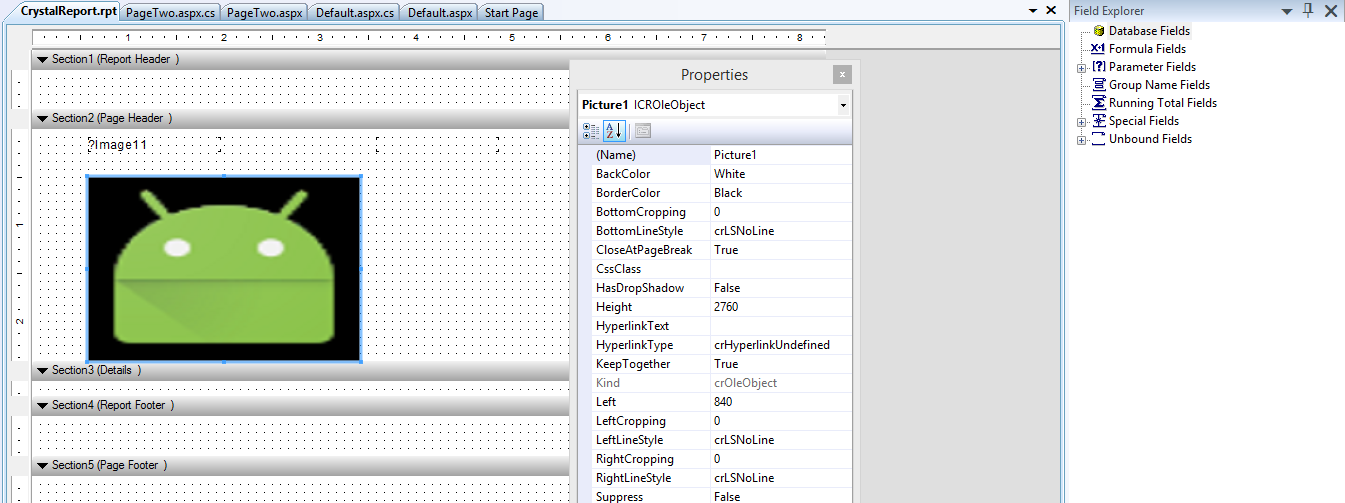 C# Windows Form Application Crystal Report Image from URL and Path 3