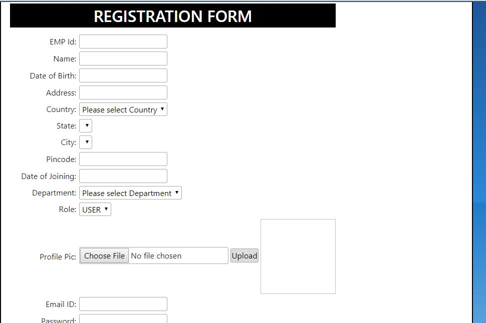 form layout registration form
