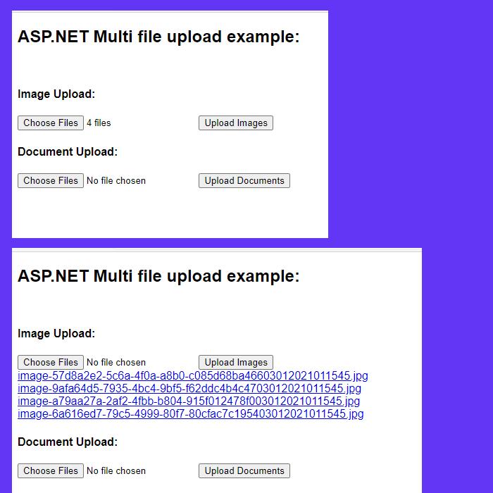 asp-net-multiple-selected-file-upload-01
